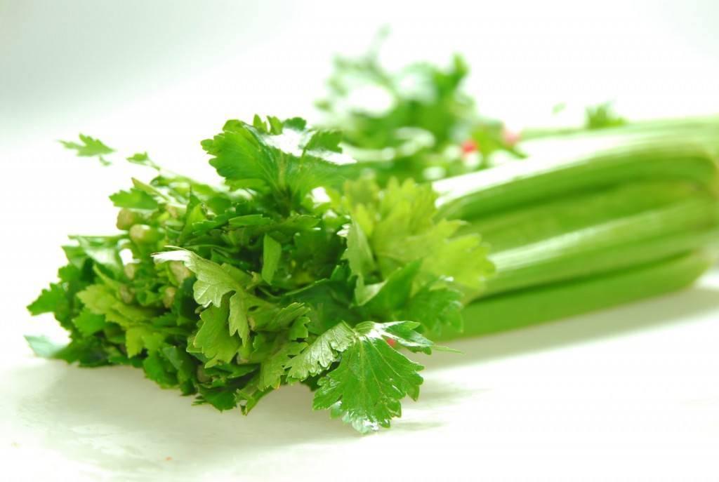 bé ăn dặm nên ăn rau gì