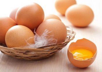 Top 3 loại thực phẩm dinh dưỡng giúp trẻ thông minh