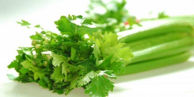 Bé ăn dặm nên ăn rau gì để phát triển tốt nhất